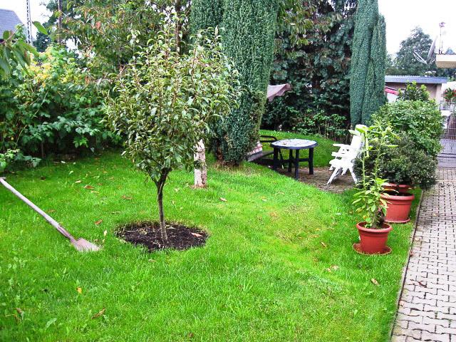 garten und landschaftsbau in raschau erzgebirge sachsen meisterbetrieb schneider barth gbr. Black Bedroom Furniture Sets. Home Design Ideas
